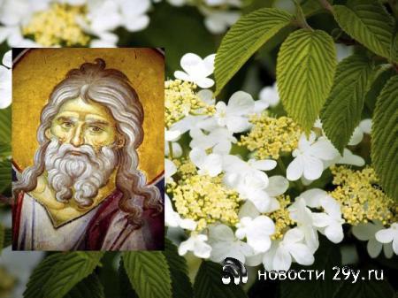 Народные приметы праздника, который отмечается 13 июня: что можно и нельзя делать в этот день